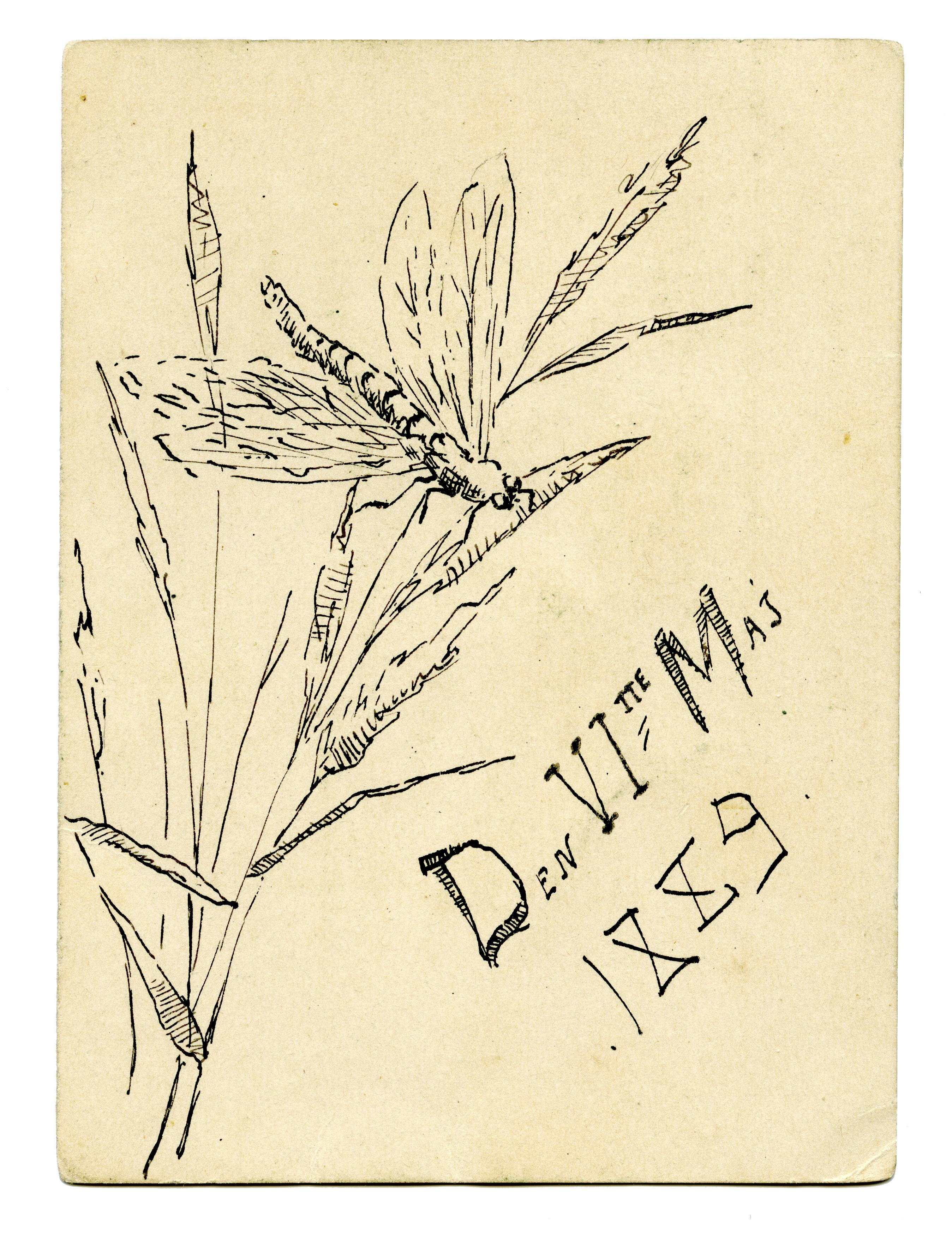 5_Teckningen_6_maj_1889